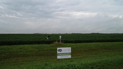 IAG Crop Tour Update Day 2