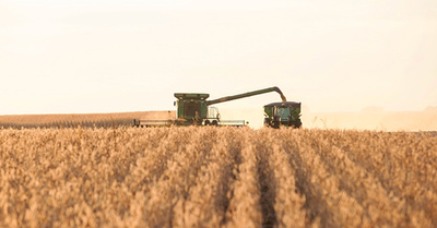 Six After Harvest Finance Questions to Answer