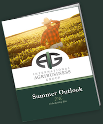 Get Your 2016 Summer Outlook! Donwload Now!